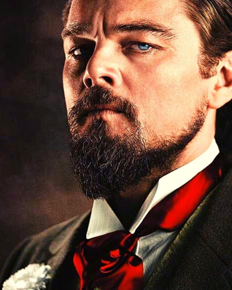 barba hollywoodiana