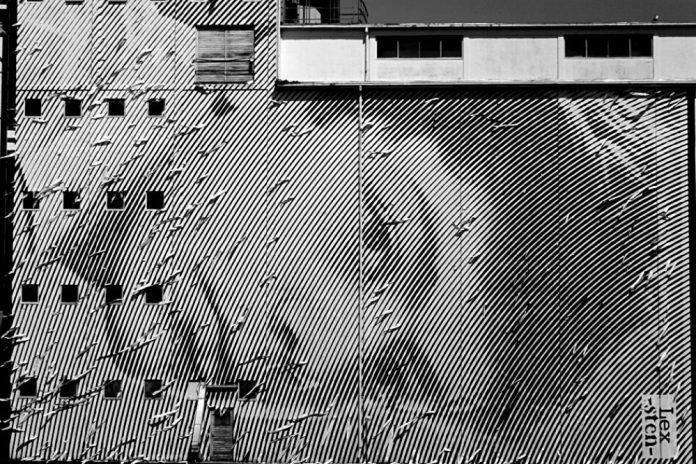 sten lex murales foto